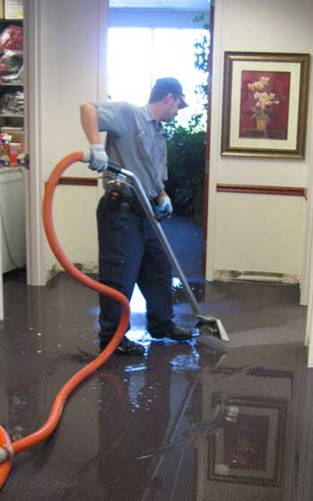 toms water damage cleaning