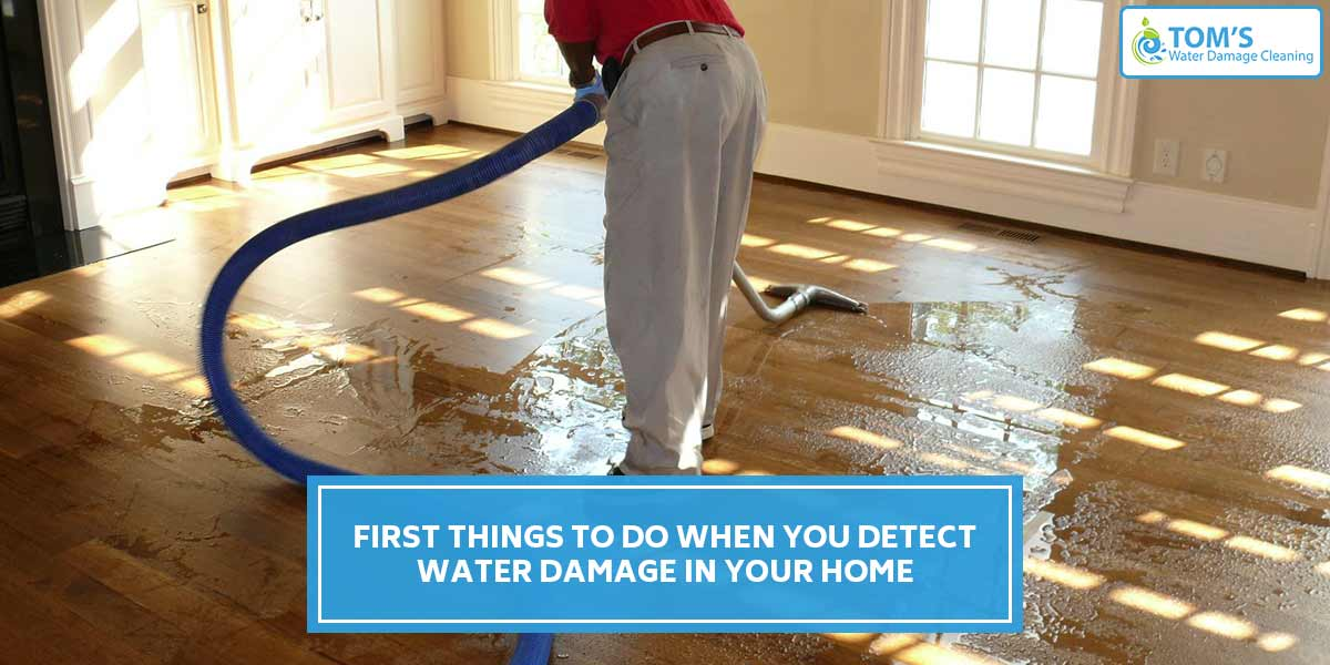 First Things To Do When You Detect Water Damage In Your Home