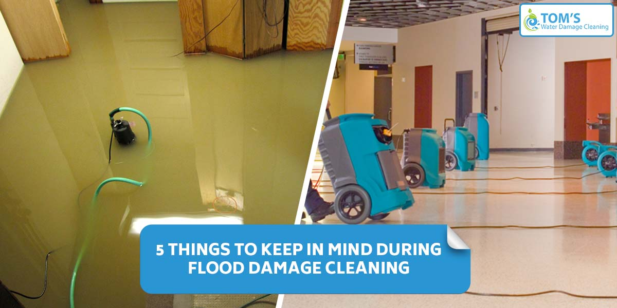 5 Things To Keep In Mind During Flood Damage Cleaning