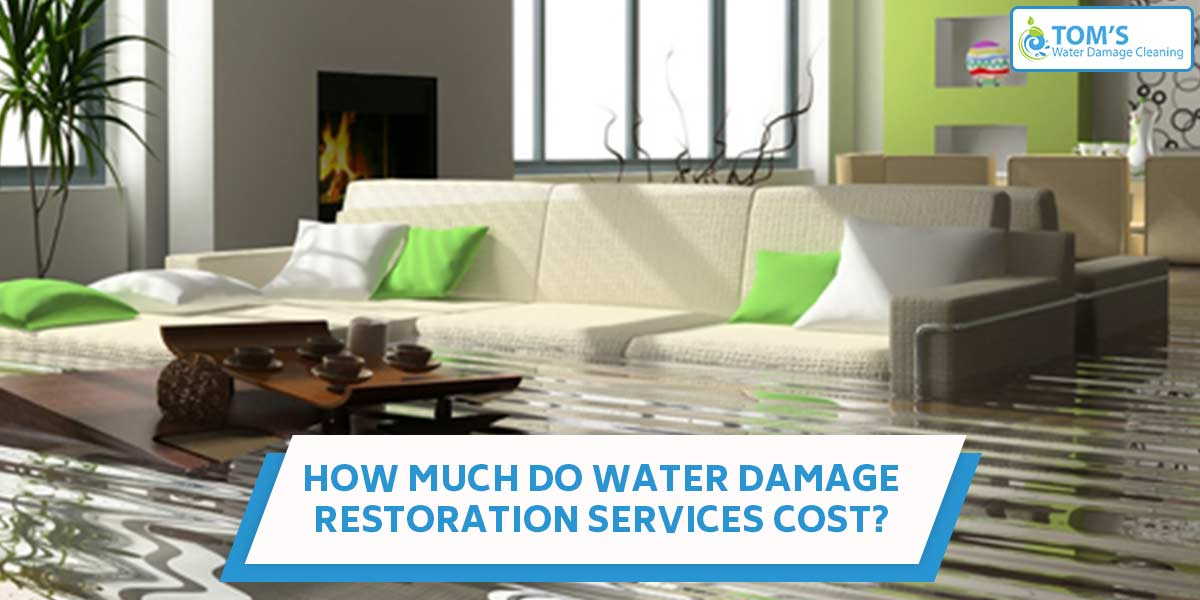 How Much Do Water Damage Restoration Services Cost?