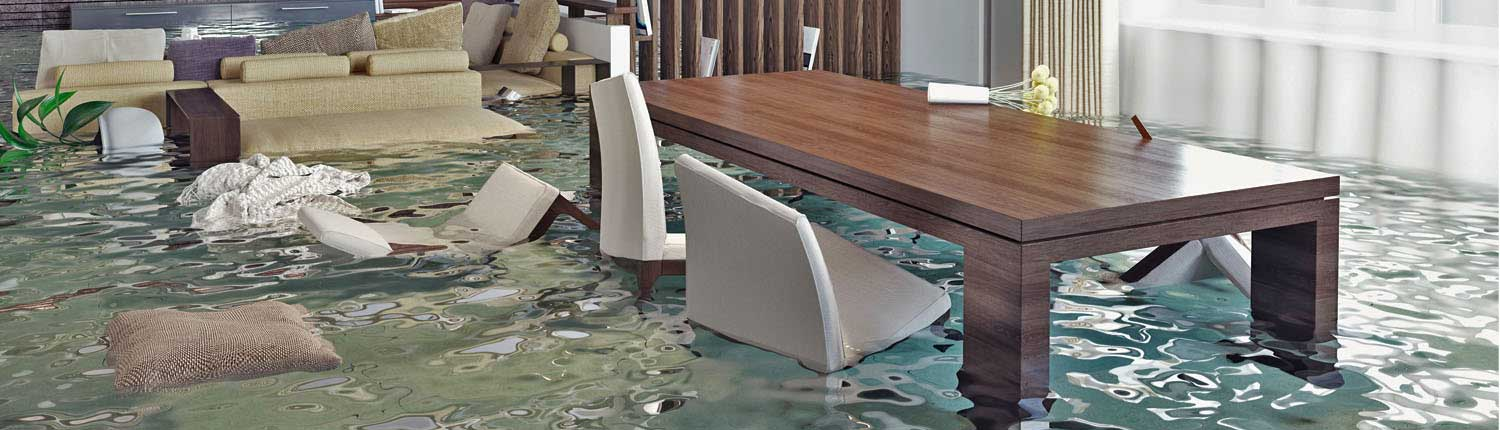 about water damage cleaning