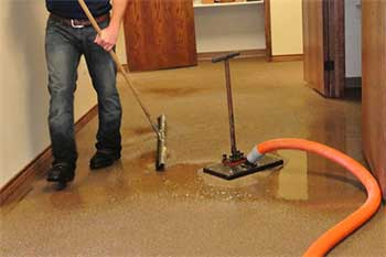 carpet water extraction