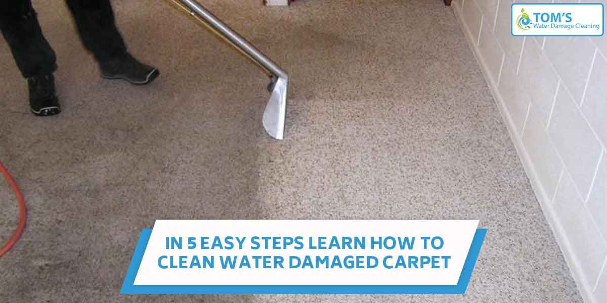 In 5 Easy Steps Learn How to Clean Water Damaged Carpet