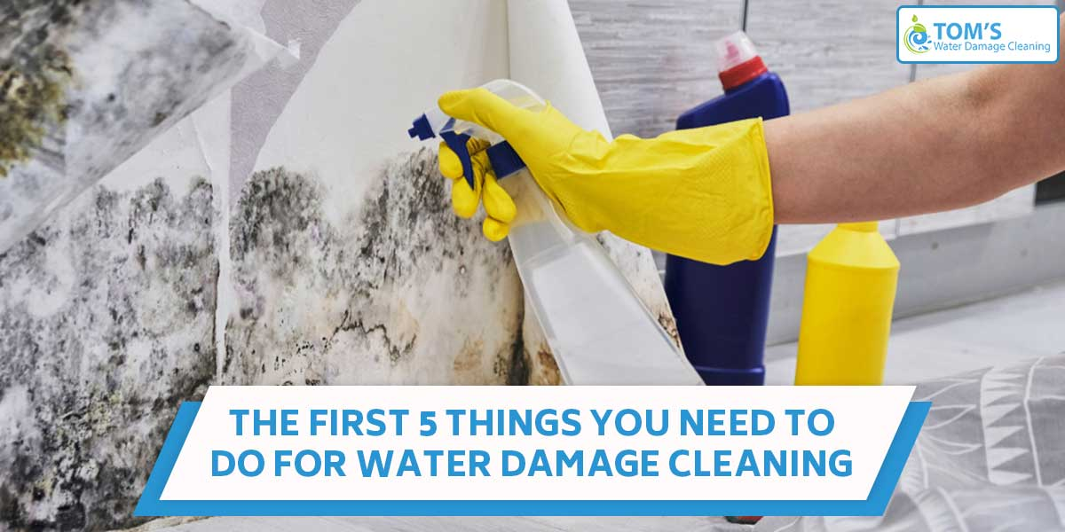 The First 5 Things You Need To Do For Water Damage Cleaning